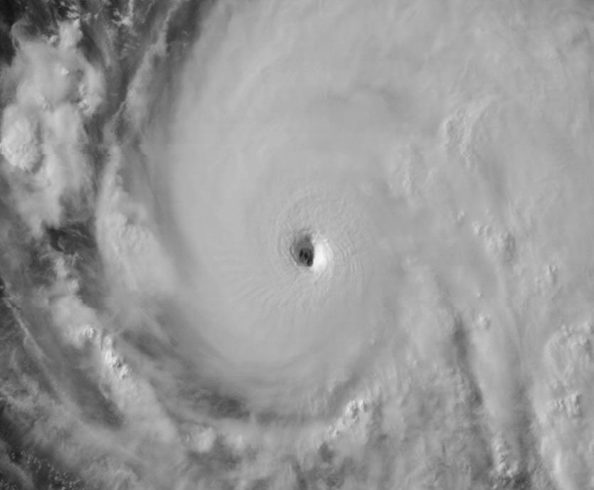 Hurricane Fernanda