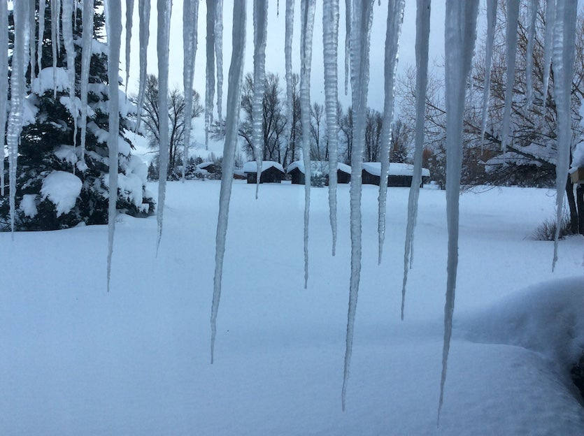 Cabins in Moran, WY, with icicles in the foreground