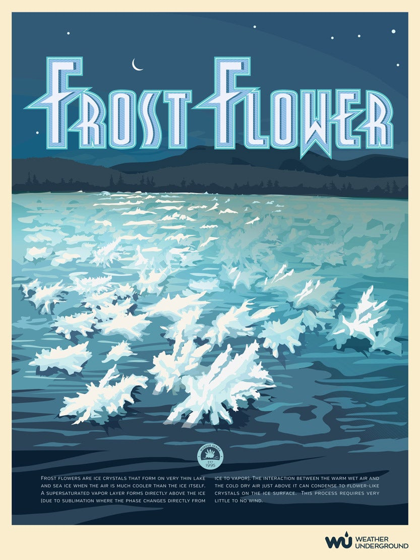 graphic relating to Weather Underground Printable referred to as Frost Flower Temperature Underground