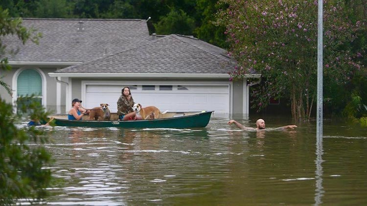 A family evacuates their Meyerland home in Houston, 8/27/2017