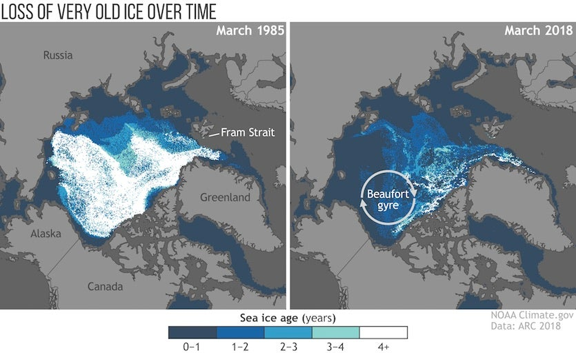 Infographic on Arctic ice loss from 2018 Arctic Report Card