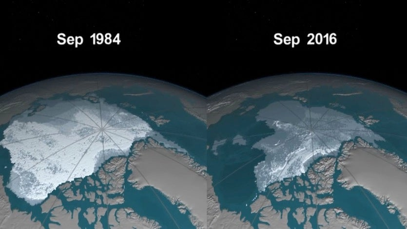 Depiction of Arctic sea ice that's at least four years old as of September 1984 (left) vs. September 2016 (right).