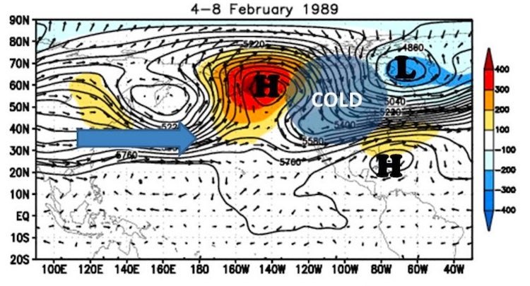 Role of Pacific-North American (PNA) pattern in Feb. 1989 cold wave