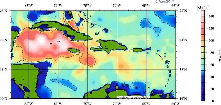 [Image: oceanic-heat-8.6.17.jpg]