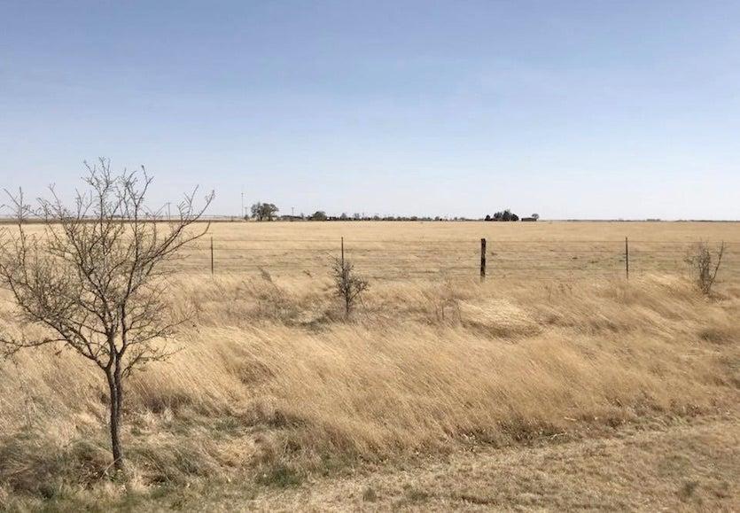 Dry grasslands of northwest TX, 4/11/2018