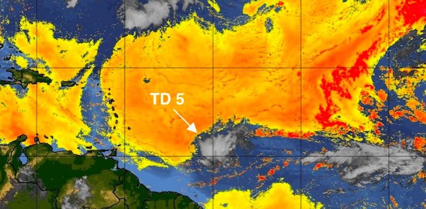 Saharan air layer around TD 5, 8/24/19