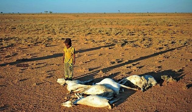 Rainy Season Starting Late for Dire Somalia Drought Areas