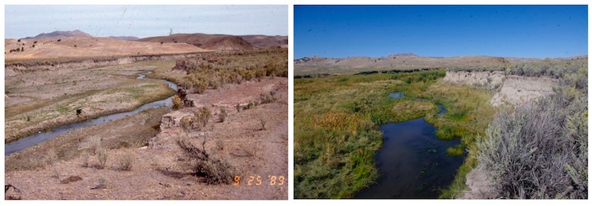 Susie Creek in Elko in northeastern Nevada on Sept. 25, 1989 (left) and Sept. 11, 2015 (right)